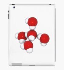 Ice Molecule iPad Case/Skin