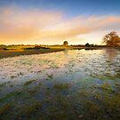 Small Pond by Svetlana Sewell