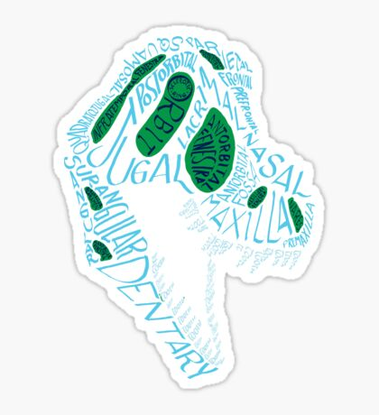 Analogous Colors Calligram Tyrannosaur Skull Sticker