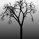 Baum Silhouette im Mondlicht von JCDesignsUK