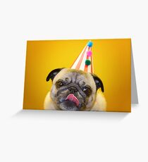 Birthday Kisses Greeting Card