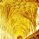 Golden Cloisters at Gloucester Cathedral. by Maybrick