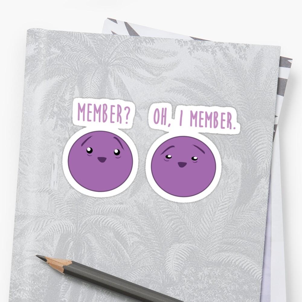 Mitglied Beeren: Mitglied Berry Southpark Fanart Print Sticker