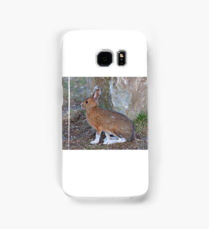 Snowshoe hare (Lepus americanus) in Spring Samsung Galaxy Case/Skin