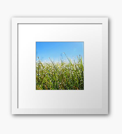 Melting Moments Framed Print