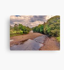 River Swale in Autumn Canvas Print