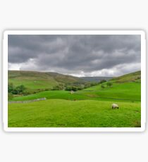 Yorkshire Dales View Sticker