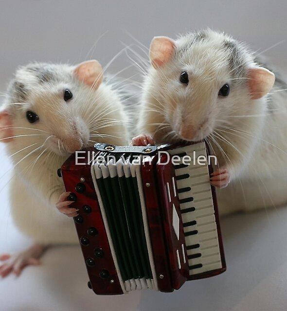 Little musicians by Ellen van Deelen