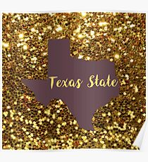 Texas State University Poster