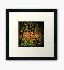 Flowers framed by leaves Framed Print