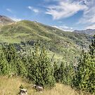 The Puigmal seen from the 'Collet de les Barraques' (Catalan Pyrenees) by Marc Garrido Clotet