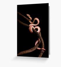 Brown Amazon Tree Boa Greeting Card