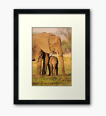 A Mother's Protection Framed Print