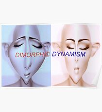 Dimorphic Dynamism Poster