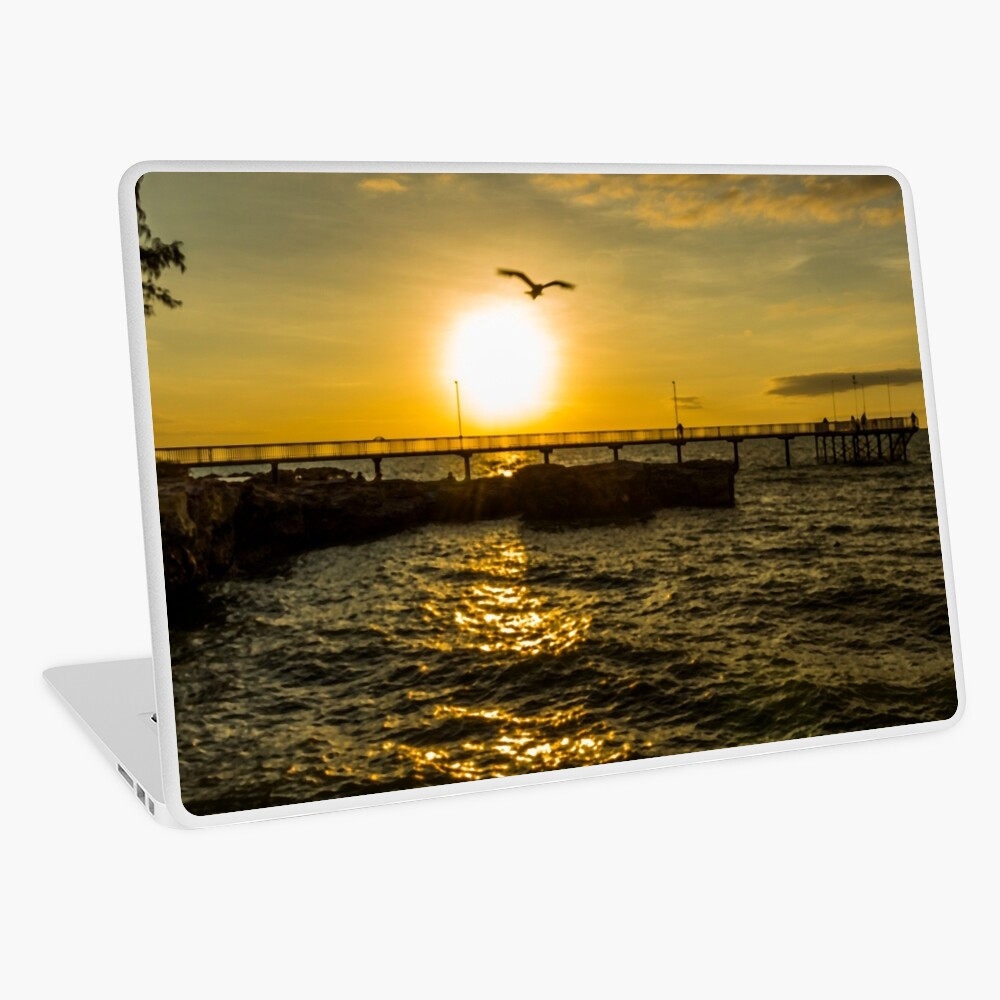 Fly off into the sunset Laptop Skin