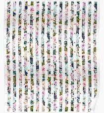 Cottage Chic Floral Roses Stripes Dots Poster