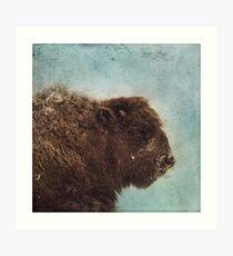 Wood Buffalo Art Print