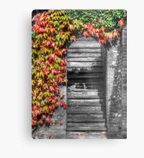 Stairway with autumn leaves Metal Print