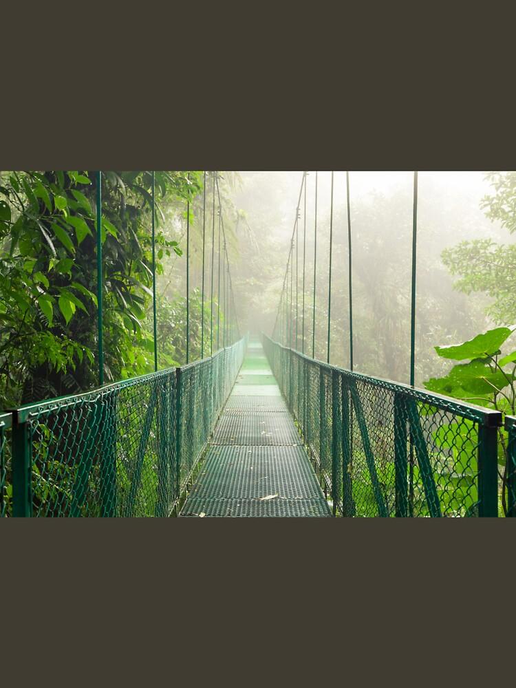 Suspension bridge in rainforest by Juhku