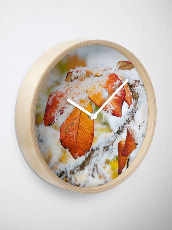 Alternate view of Rose bush frozen autumn color leaves Clock