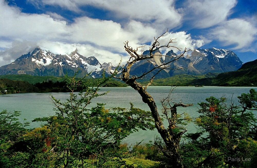 Lake Pehoe and Cuernos del Paine, Torres del Paine National Park, Chile by Paris Lee