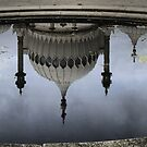 Upside Down in a Lily Pond by Larry Lingard-Davis