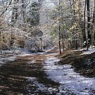 First Snow by Marriet