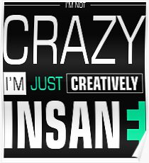 I'm not Crazy Just Creatively Insane Funny Saying Sentences Text Poster