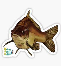 carpe carp Sticker