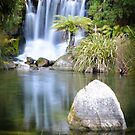 Rainbow Springs New Zealand by Candy Jubb