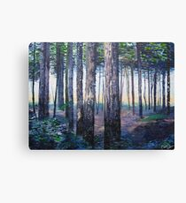 Through the Trees of Sherwood Canvas Print