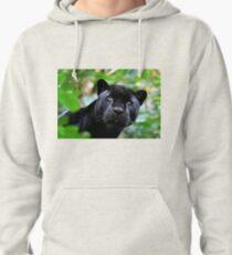 Black Jag Pullover Hoodie
