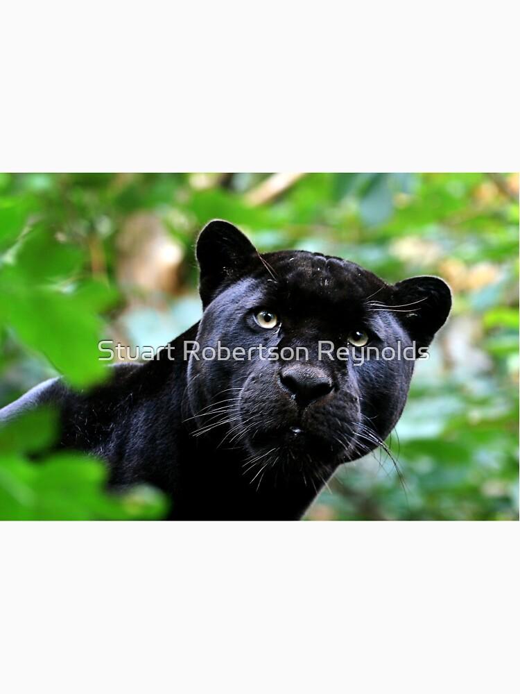 Black Jag by Sparky2000