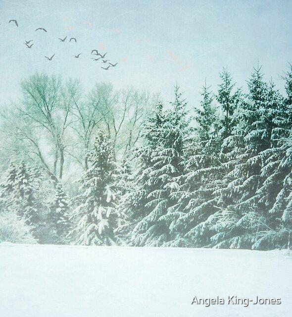 Winter's watc by Angela King-Jones