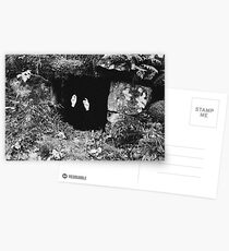 The Damned Postcards