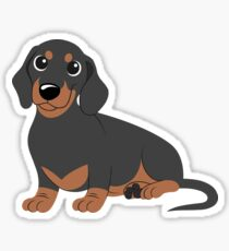 Miniature Dachshund - Black & Tan Sticker