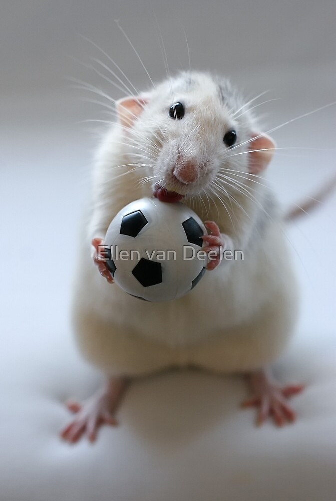 Learning how to play soccer. by Ellen van Deelen