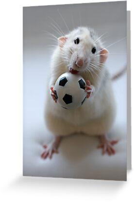Learning how to play soccer. by Ellen van Deelen