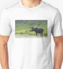 Bull Moose - Algonquin Park, Canada Unisex T-Shirt