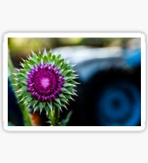 Thistle and Tractor Sticker