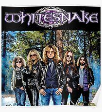WHITESNAKE CREW TELUR Poster