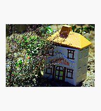 Cookie Jar in Garden Photographic Print