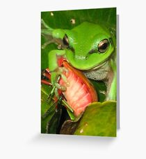 lunchbox Greeting Card