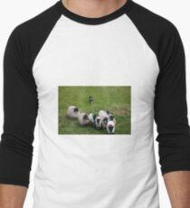 Herding Men's Baseball ¾ T-Shirt