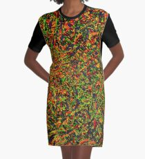 Ethnicity  Graphic T-Shirt Dress