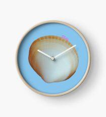 Shelly Clock