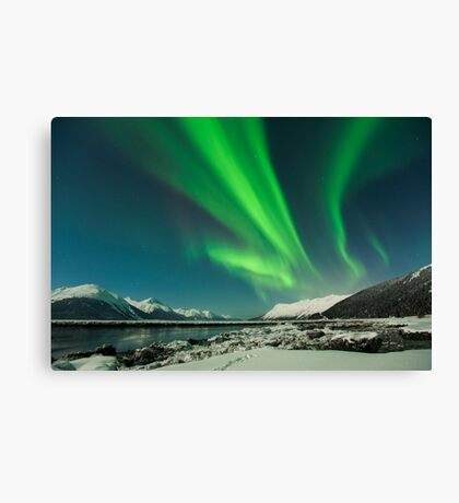 Magnetic Attraction Canvas Print