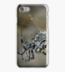 ...said the Spider to the Fly iPhone Case/Skin