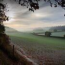 Autumn fields in the Chilterns by David Howlett