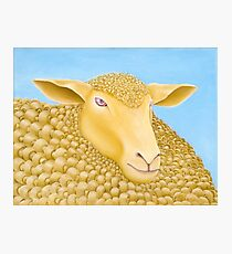 WOOLLY MUNDANE - 'The exciting one' - Oil On Canvas Photographic Print